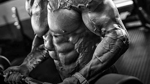 Как питаться, чтобы набрать мышечную массу без жира
