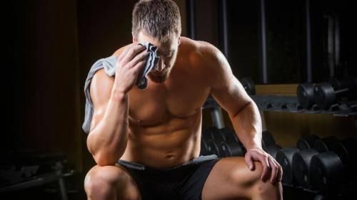 Какие мышцы растут быстрее всего. Как растут мышцы после тренировки