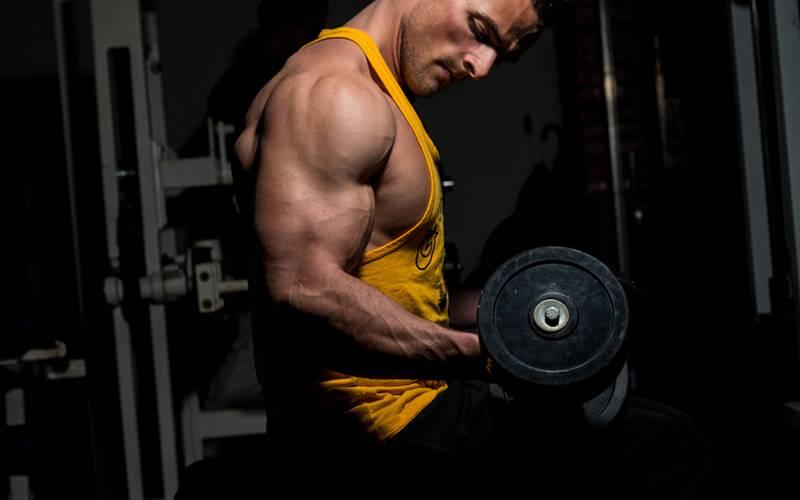 Что лучше: тренировка на все тело или на отдельную группу мышц?